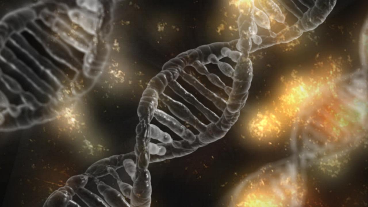 Informação genética pode ser usada para prever miopia em crianças